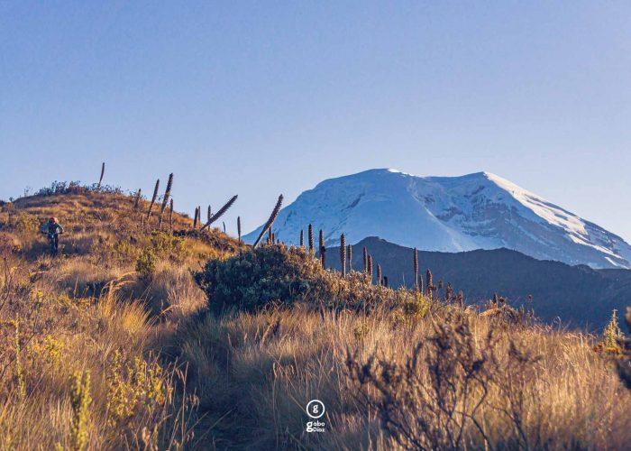 Andes of Ecuador