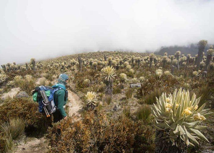 Colombia adventure tour
