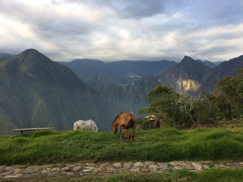 Peru Machu Picchu Trek