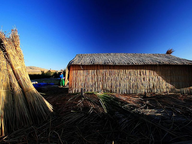 reed hut peru