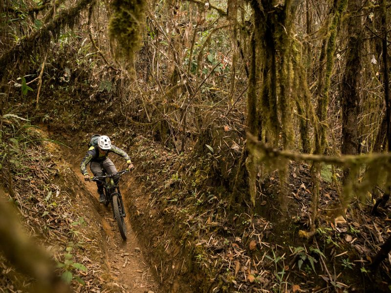 Cloud forest biking colombia